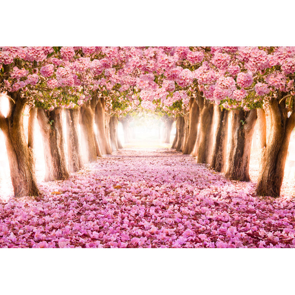 Pink Cherry Blossom Backdrops Photography Petals Covered