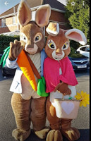 Peter Rabbit Mascot Costumes boys rabbit and girl rabbit easter bunny mascot cotumes for Halloween party event