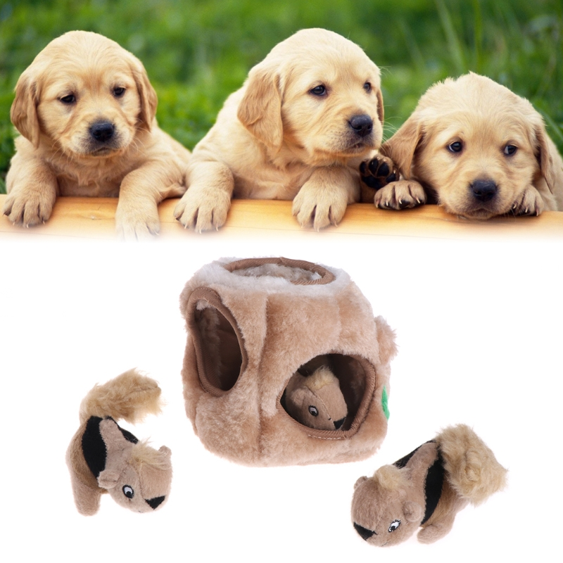 dog-toys-squeaky-three-squirrel-hide-plush-puzzle-dogs-outward-hound-interactive
