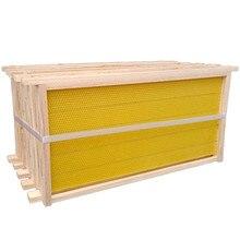 Honeycomb bee nest bee hive beekeeping tool beehive frames for flow hive
