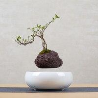 Новый магнитной левитации воздушный бонсай подвеска левитации цветок горшочное растение декоративный цветок для дома горшок хорошее каче