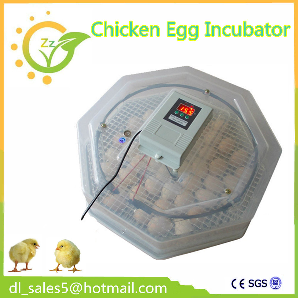 ФОТО  60 Eggs 240V Incubator Turn Eggs Tray Chicken Duck Goose Birds Eggs Automatic Incubator Tray