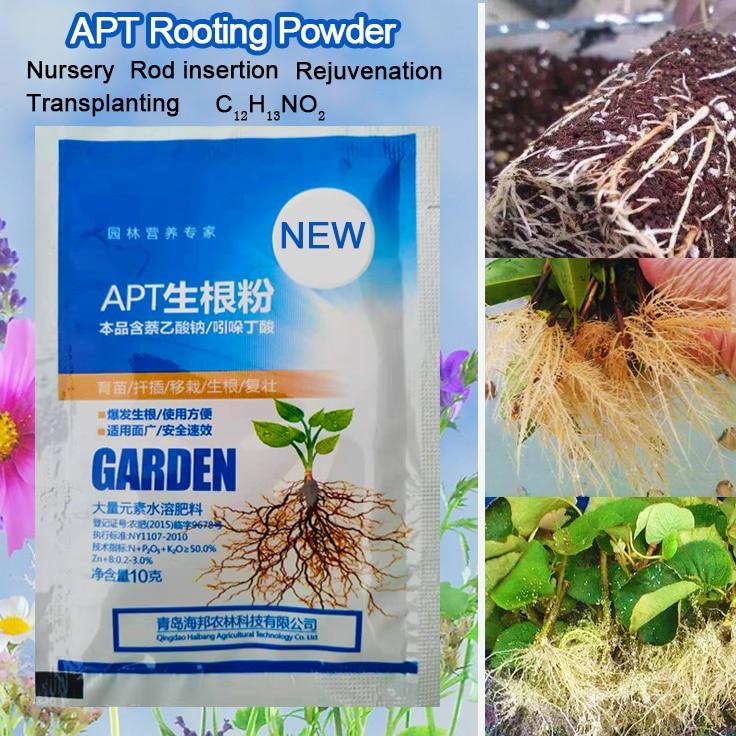 IBA Bonsai Plant Growth Root Medicinal Hormone Regulators Growing Seedling Recovery Germination Vigor Aid Fertilizer Garden(China)