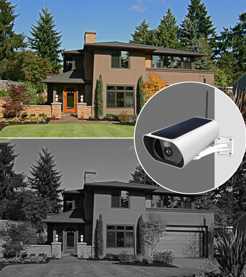 pet surveillance camera