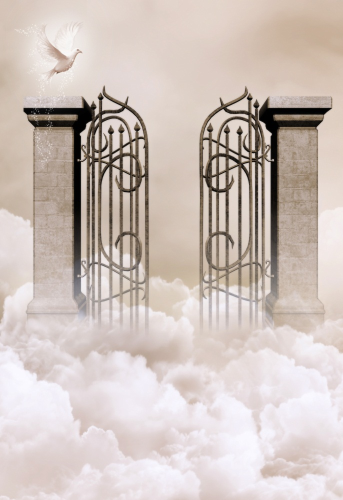 Laeacco Wonderland Cloudy Gate Pigeon Baby Photography Backgrounds Vinyl Backdrops For Photo Studio Customizable Background Prop