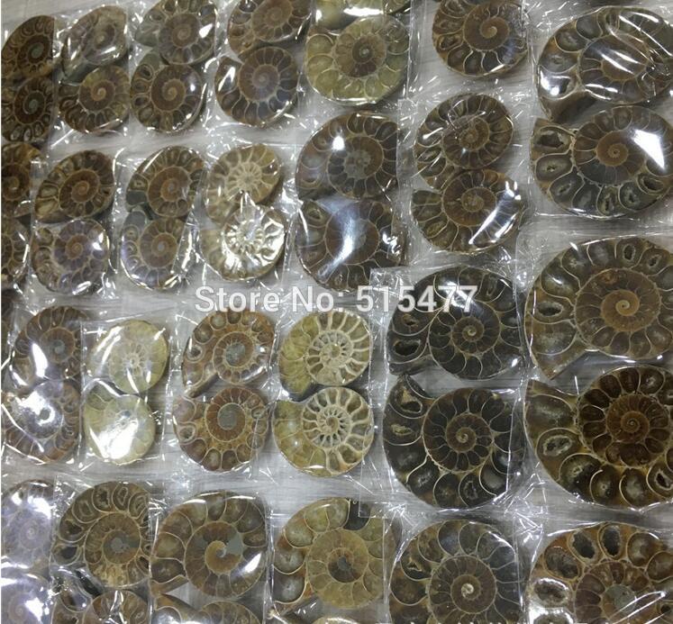 1 KG (2,2lb) naturel arc en ciel Split Ammonite fossile coupé en moitié Madagascar guérison. Paires, prix de gros, livraison gratuite-in Pierres from Maison & Animalerie    1