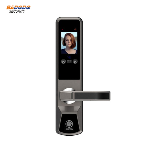 Smart face recognition electric door lock palm print door gate lock anti-theft home villa access control door lock system Islamabad