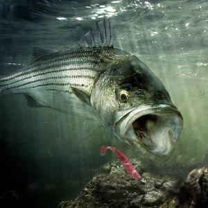 Image 2 - 6ピース/ロットワブラー釣りルアー7センチメートル/9センチメートル簡単クリーナースイムベイトシリコーンソフト餌ダブルカラー鯉人工ソフト餌