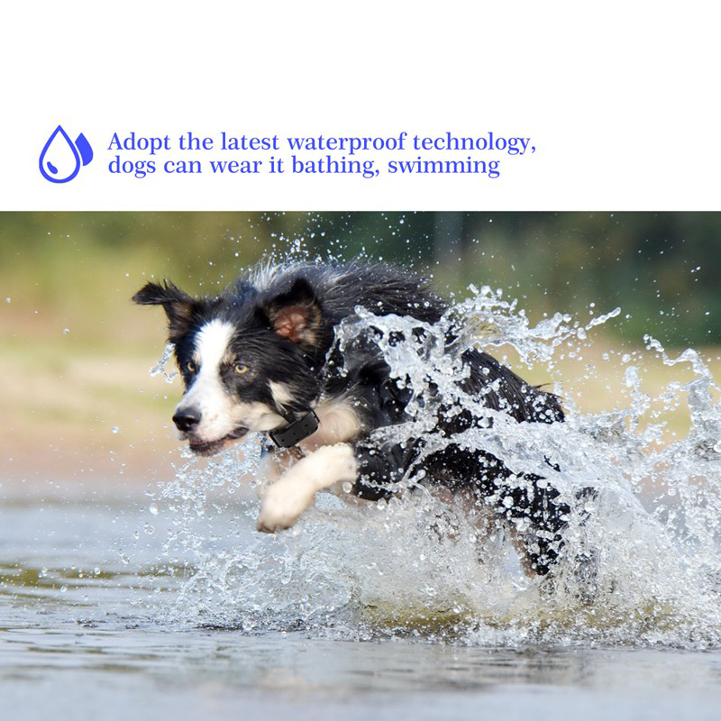 Rechargeable Waterproof Electronic Dog Training Collar Stop Barking LCD Display 800m Remote Electronic Shock Training Collars3