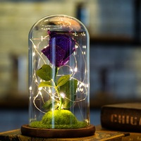 USB Glowing Immortal Rose for Valentine's Day Artificial Beauty Rose Flower in Glass Bottle Love Gifts Home Desktop Decoration