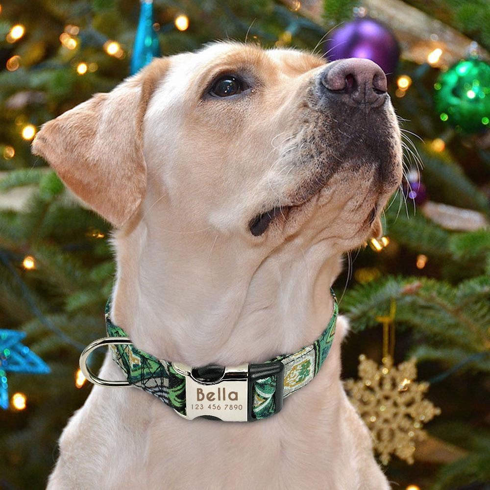HTB17Wx2bfvsK1RjSspdq6AZepXaA - Halsband hond met naam en telefoonnummer nylon ruige patronen