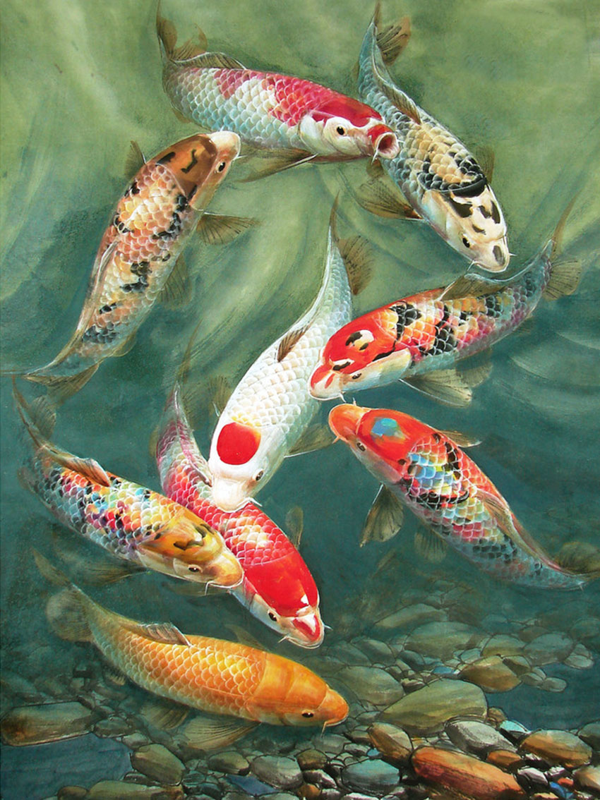 Popular koi cross stitch buy cheap koi cross stitch lots for Cheap koi fish
