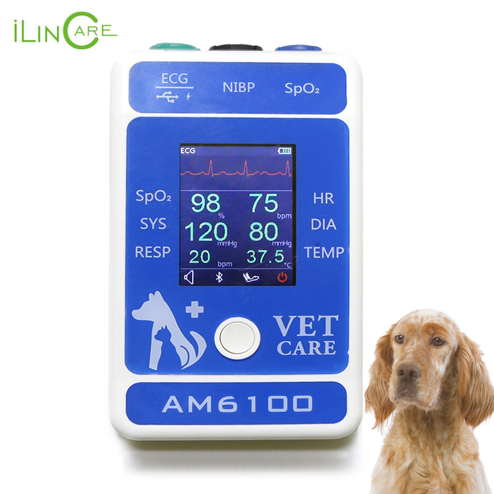 Ilincare AM6100 Animal Hospital Medical ECG Temperatura SPO2 Bluetooth Equipamentos Veterinários Animais Handheld Monitor de Paciente