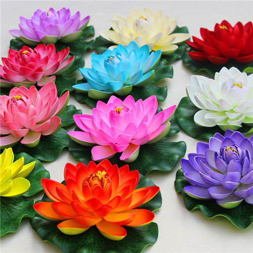 Big Promotion! Multicolor Mixed Water Lily Bonsai Hydroponics 5Pcs Plant Aquatic Plant Pot Lotus Bowl Lotus Botanical Garden