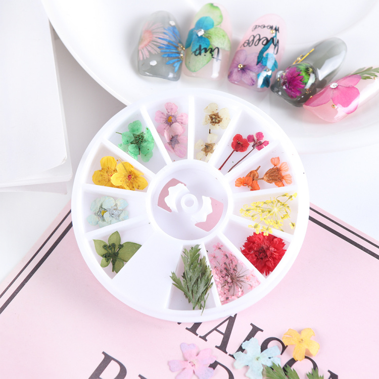 Dried Flowers Nail Art Decoration Natural Dry Floral Leaf DIY Sticker Beauty Jewelry Tips Colorful Nail Gel Ornaments 01 (8)