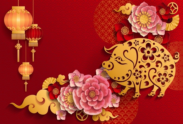 laeacco red new year backgrounds chinese spring festival of pig lantern flower handmade photography backdrop for