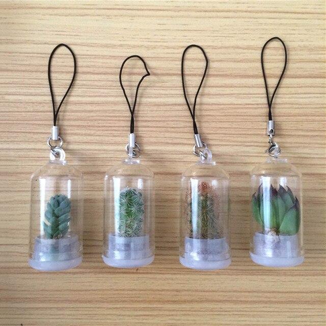 lucky drifting bottle succulent plants micro landscape car pendant