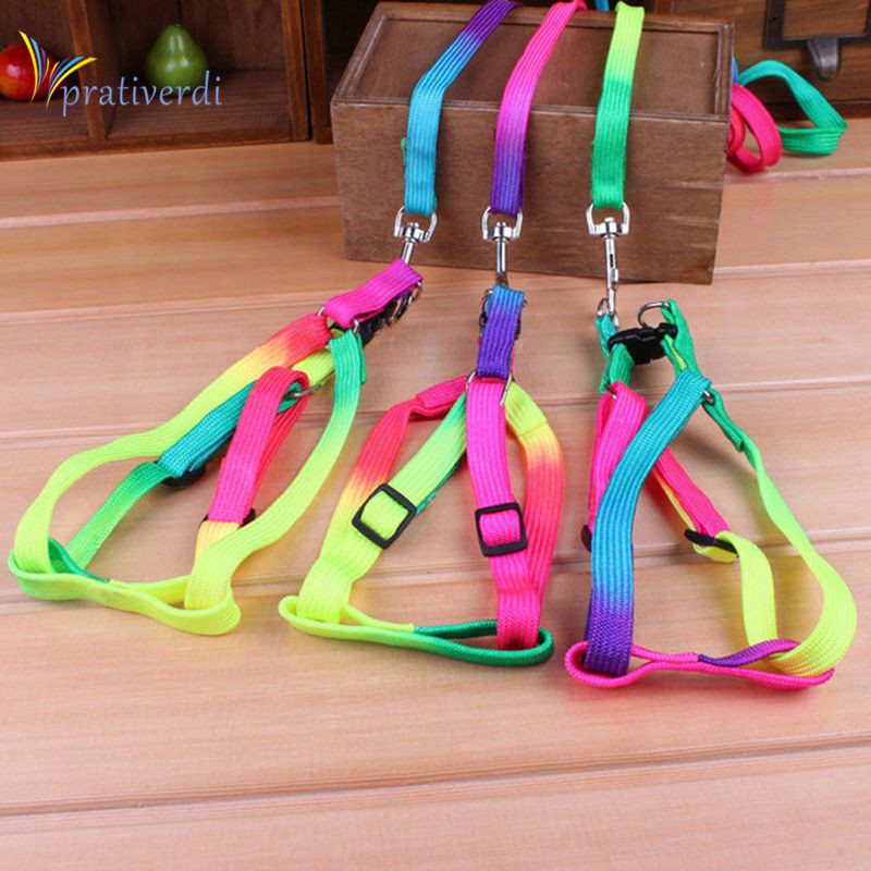 prativerdi 1 PCS Adjustable Rainbow color Pet Dog Leash Small Puppy Cat Rabbit Kitten Nylon Leash Harness Collar Lead in Collars from Home Garden