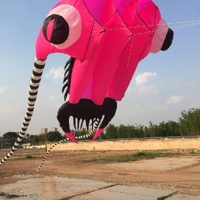 Toys & Hobbies Adaptable Trilobite Beach Soft Cometas Chinas Cerf Volant Single Line Kites Flying Vlieger Large Inflatable Kites Ripstop Nylon Aquiloni Diversified In Packaging Kites & Accessories