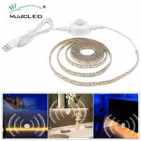 0.5m-3m USB Motion Sensor LED Strip Light Cupboard Wardrobe Bed Lamp Waterproof IP65 Warm White Flexible LED Strip 5V Tape