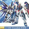 MOMOKO Modelo Nova MG 1/100 ZGMF-X10A FREEDOM Mobile Suit Gundam Seed Genuine Montados Brinquedos Anime crianças brinquedos Figuras de Ação Robô