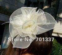 Lvory FASCINATOR Dances Races Weddings Party HAT Costume Purple Flower Hair Hat H005