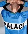 Высокое Качество 2016 Мужская Женская ДВОРЕЦ Скейтборды Palasonic Пуловер Мужской Хлопок Мода High Street Дворец Скейтборд Свитера