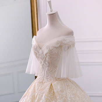 New Arrival V Neck Ball Gown Wedding Dresses Princess Tulle Hochzeitskleid Tassel Sleeves Abiti da Sposa Sparkly Robe Mariee