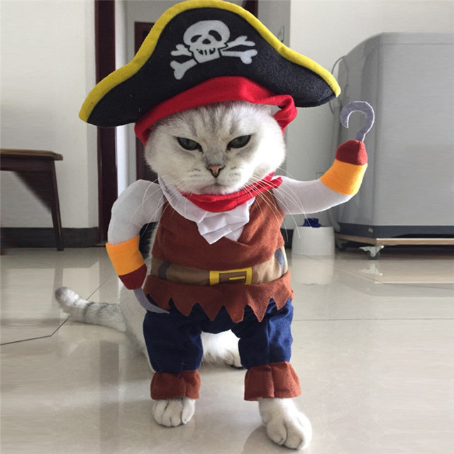 Funny Halloween pet cat dog Pirate costume cosplay clothes with dog Skull hat dog puppy party & Funny Halloween pet cat dog Pirate costume cosplay clothes with dog ...
