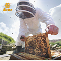 Hot Selling Good Quality Space Outfits Look Veil Bee Protecting Dress Beekeeping Suit Beekeeper Clothing Free Shipping