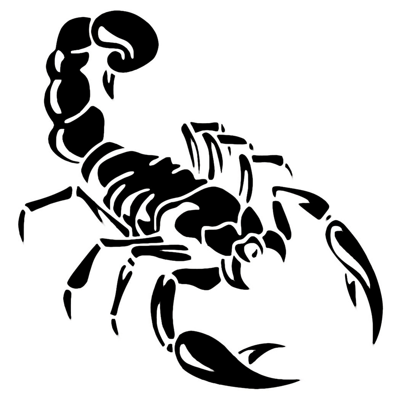 Classic Scorpion Insect Vinyl Decal Car Sticker Fits Truck