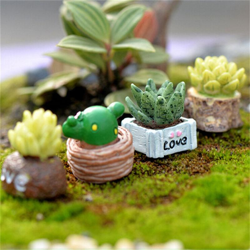unids mini miniatura planta de maceta ornamento artesana musgo paisaje micro de hadas jardn de