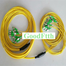 Fiber Patch Cord Jumper Trunk FC-FC APC FC/APC-FC/APC SM 12 Cores Breakout 2.0mm GoodFtth 10-50m