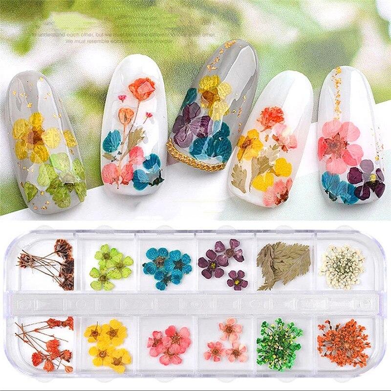 1 коробка смешанных сухих цветов, украшения для ногтей, 3D натуральные сухие цветочные наклейки, сделай сам, творческие переводки для ногтево...