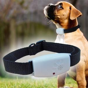 Collar repelente de plagas de perro electrónico, repelente ultrasónico de pulgas, insectos, plagas repelente de mosquitos, repelente de mosquitos y ratones