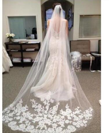 New Design Begie Long Wedding Veil 2019 Wedding Party Bridal Veil Accessories Lace With Comb One Layer