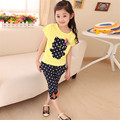 Retail Hot Style 2016 Hot Girls Girls Pure Cotton Short Sleeve T-shirt + Spandex Pants Suit Set Free Postage Delivery