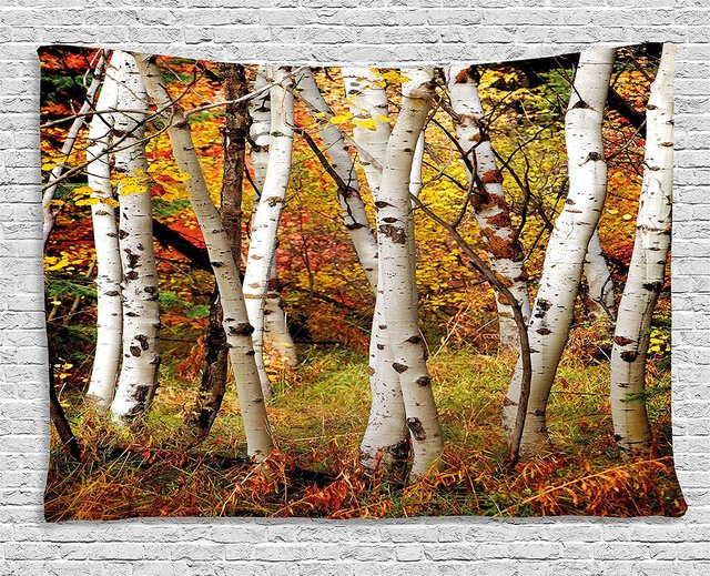 Fall Decor Tapestry White Fall Birch Trees With Autumn