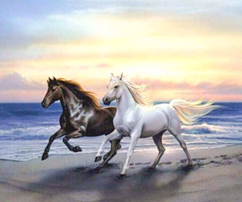 Rhinestone painting diamond The two horses at the beach run round diy diamond painting diamond embroidery painting craft set