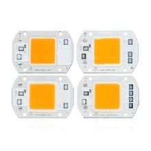 цена 10 PCS LED Chip Lamp 20W 30W 40W 50W AC 220V Smart IC Fit For DIY LED Flood Light Spot lamp Street lamp Cold White Warm White