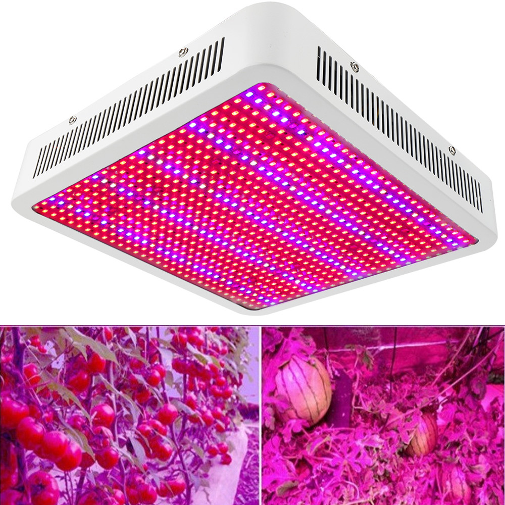 800W 800 LED Full Spectrum LED Grow Light Hydroponics Plant Lamp Seeds Growing Flowering Fruits Indoor Growth Lighting 300w grow led light ufo full spectrum 277leds smd5730 plant grow lamp for hydroponics system aquarium grow tent flowering