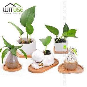 Image 5 - Bamboo Tray Plant Stand Ceramic Planter Maceta Bonsai Pot Cactus Flower Pots Container Garden Decoration Crafts 12 Types Hot Sal