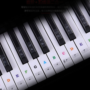 Transparent detachable music decal notes piano keyboard stickers 54/61 or 88-key electronic piano piano spectrum sticker symbol(China)