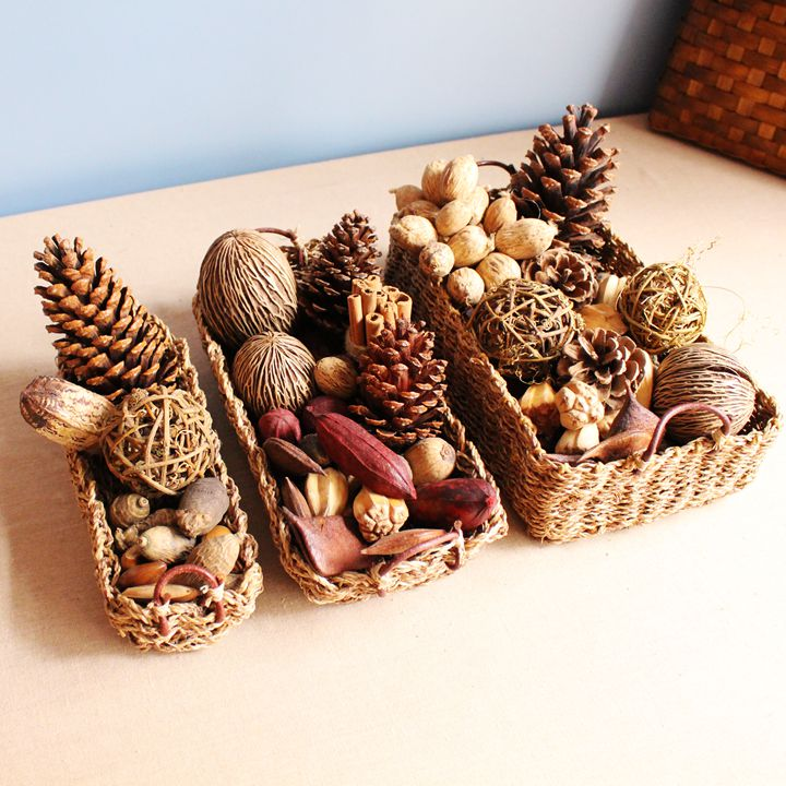 Buy natural dried nuts set christmas - Sapin en carton a decorer ...