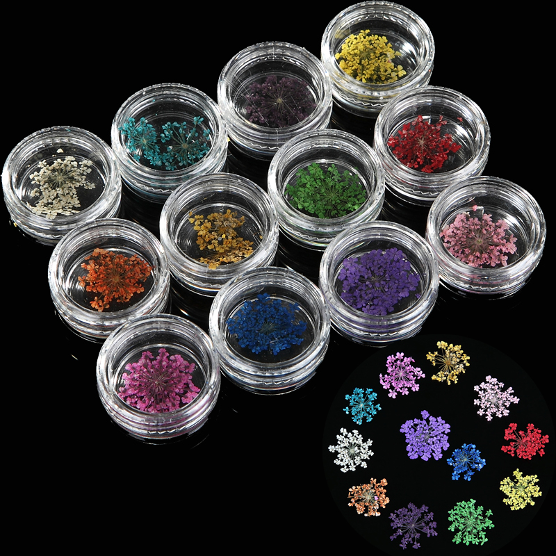 12 Color/set Nail Art Decoration Dried Flowers 3D Slices Decal with Case French Acrylic Gel Polish Tips DIY Nature Manicure Tool  diy 20pcs bag nail art decoration 3d gel polish beautifully oval stone charm diamond acrylic resin nail art accessorietips