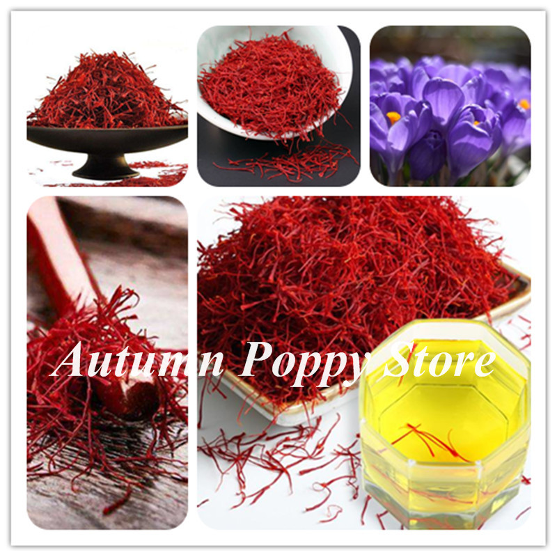top 10 largest crocus saffron near me and get free shipping - a68