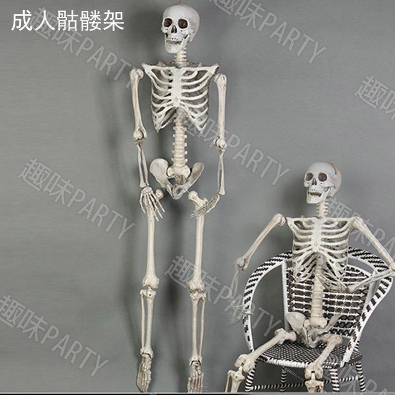 Online buy wholesale plastic skeleton from china plastic for Bag of bones halloween decoration