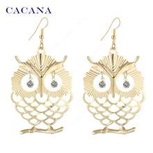 CACANA Earrings Dangle Long Earrings For Women Beautiful Owl With Shining Eye Bijouterie Hot Sale No