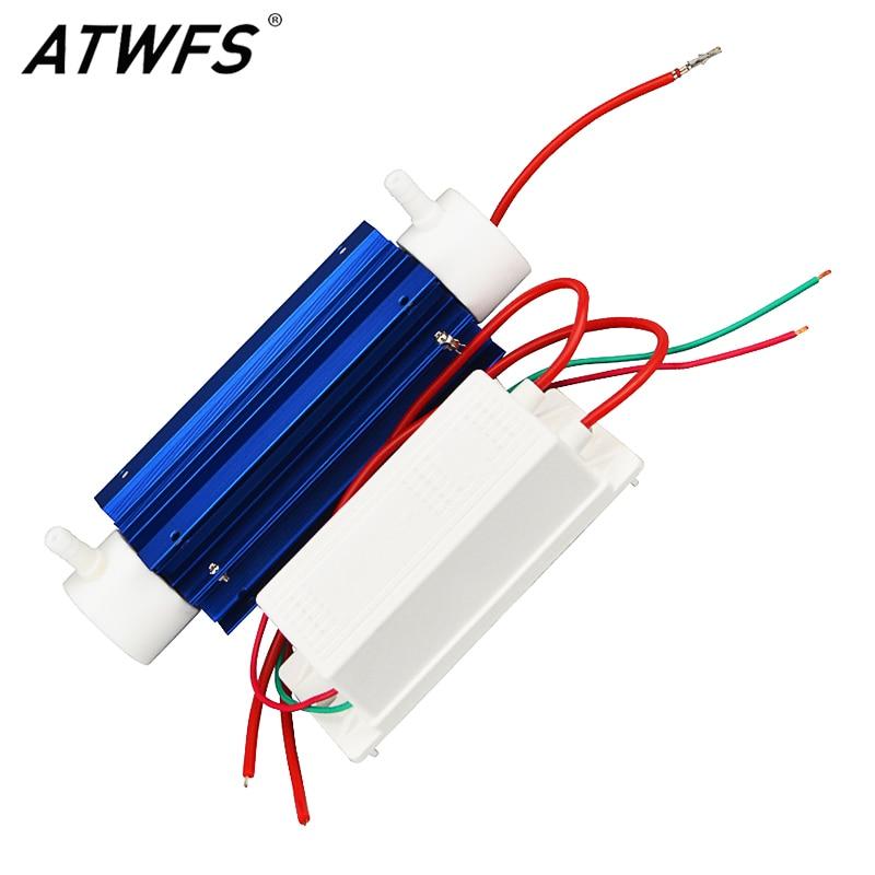 Aliexpress.com : Buy ATWFS Ozone Generator 220V 7g Water