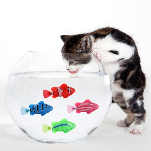 Robot Cat Toy >> Robofish Battery Powered Fish Water Robot Cat Toy Water Activated